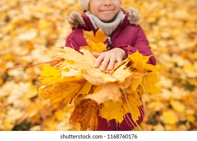 childhood, season and people concept - close up of girl with heap of maple leaves at autumn park