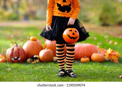Children in black and orange witch costume and hat play with pumpkin and spider in autumn park on Halloween. Kids trick or treat. Little girl carving pumpkins. Family fun in fall. Dressed up child.