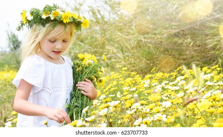 Children blond girl with daisy flowers. Summer vacation time. Country side.