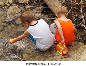 Children with a cage finding bugs, frogs and shells in a stream