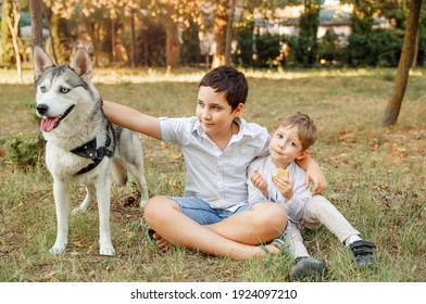 Children caressing dog outdoors. Owner walks with a dog. Family playing with dog in park. Children and a pet on a summer meadow. Boys lovingly embraces his pet dog. Veterinary medicine, animal care