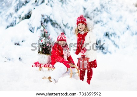 b642c1d66a Children with Christmas tree on wooden sled in snow. Kids cut Xmas tree. Boy