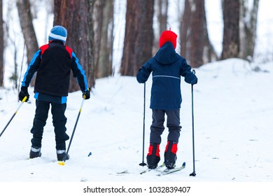 Children in cross-country skiing in winter