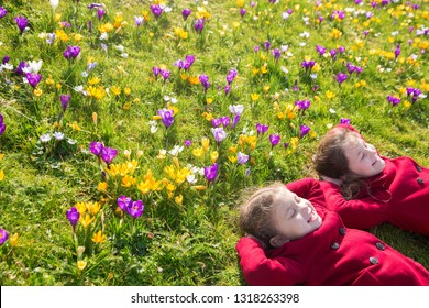 Children enjoy spring, sun and flowers. Smiling kids are lying on the green grass on the lawn among the spring flowers crocuses and have fun. Spring sunny day, first flowers and happy children.