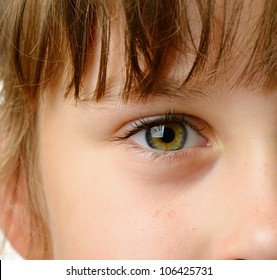 Children eye closeup. High detailed photo