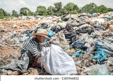 Rag Picker Images, Stock Photos & Vectors | Shutterstock
