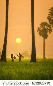 Children fisherman are fishing in the field at sunrise.