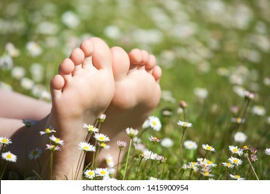 children foot camomile field background