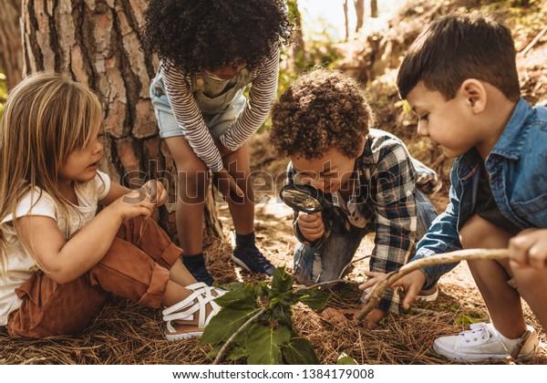 Kinder im Wald, die Blätter als Forscher zusammen mit der Lupe betrachten.