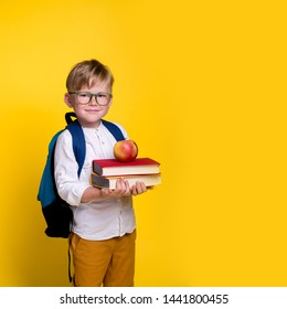 Children go back to school. Pupil of primary school go study with backpack isolated on yellow. Beginning of lessons. First day of fall. Elementary student.