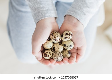 Children hands holding many quail eggs on light background. Concept of organic product. Place for text