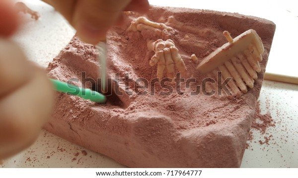 Children Having Fun Archaeology Excavation Kit Stock Photo