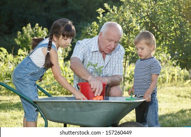 children is helping her Grandfather in the garden
