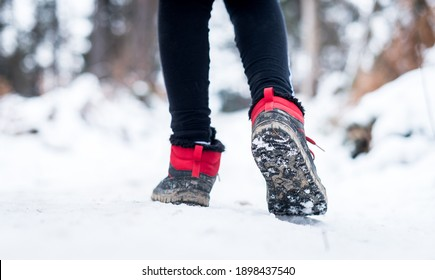 Children hiking in snow mountains forest on family trip. Active family, parents and children trekking in winter in nature. Kids are walking in the woods trail road in cold snowy winter time.