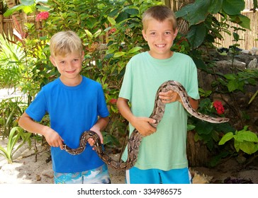 Children holding a wild Boa Constrictor snake in Central America