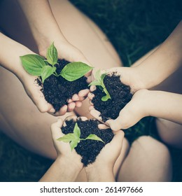 Children holding young plant in hands against spring green background. Ecology concept. Earth day