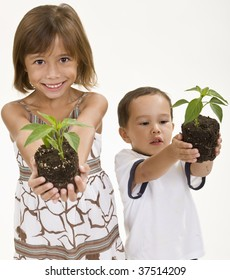 Children holding young plants ready for planting.