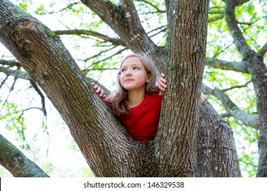 children kid girl playing climbing to a tree in a park outdoor
