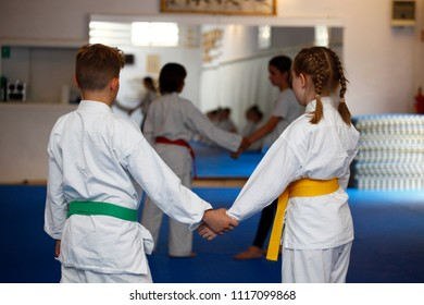 Children in kimono during aikido training in the gym