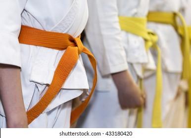 Children in kimono sitanding in a line on martial arts class