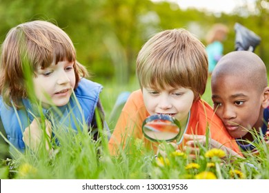 Children lying in the grass and looking at nature as a researcher together with the magnifying glass