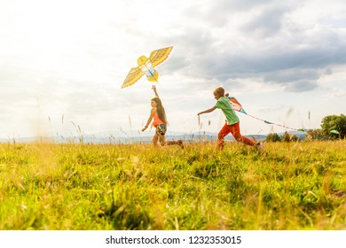 Children in the meadow fly kites