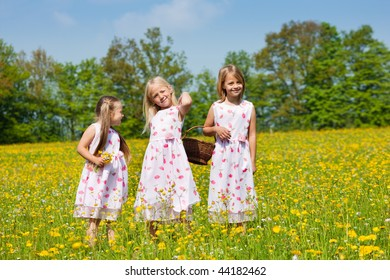 Children on a beautiful sunlit meadow in spring with a basket on an Easter egg hunt
