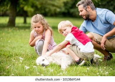 Children petting and playing with dog in summer at the park
