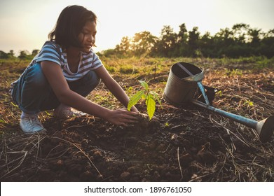 children planting tree in garden. concept eco earth day