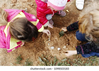 children planting trees in the forest and growing plants coopera