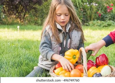 children play in the garden on the grass.
