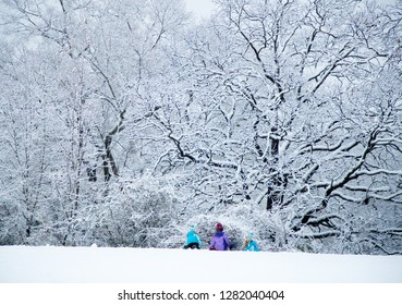 Children playing during snow day in city park with snow covered trees in background
