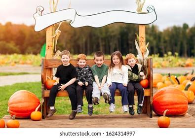 Children at a pumpkin patch in the fall