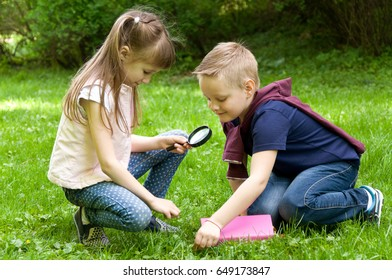 Children are reading a book with a magnifying glass. Smart little pupil. Early development of children. Training and rest