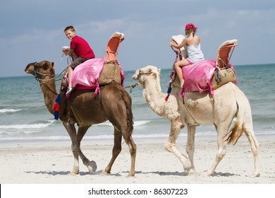 children riding camels on the beach by the sea