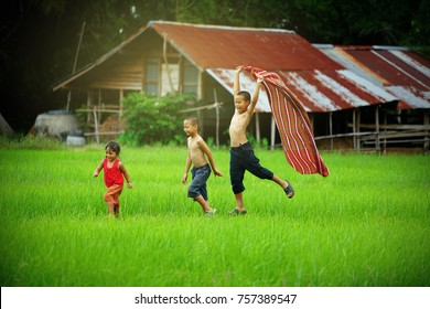 Children runing in the backyard of their homes,Children playing in rice field countryside of asia.