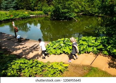 Children running to the pond in Hylands park, house, Chelmsford