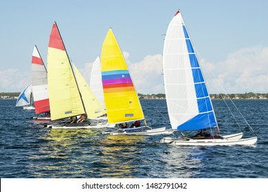 Children sailing in small colourful catamarans for fun and in competition. Close racing by young sailors on saltwater Lake Macquarie. Photo for commercial use.