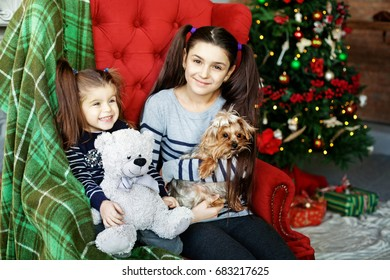 Children sit on a large chair. Little dog and toy bear. The concept of Christmas and New Year.