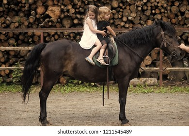 Children sit in rider saddle on animal back. Girls ride on horse on summer day. Friend, companion, friendship. Equine therapy, recreation concept. Sport, activity, entertainment. riding school