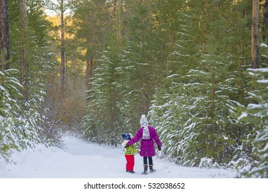 Children walk in a fairy winter forest. Trees covered with snow blanket.
