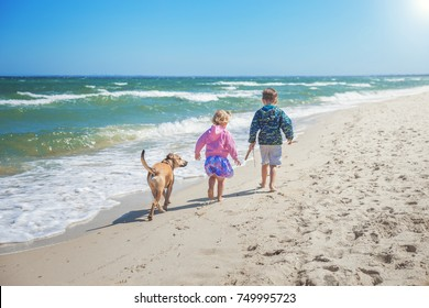 Children walking with the dog along the sandy beach in Australia.