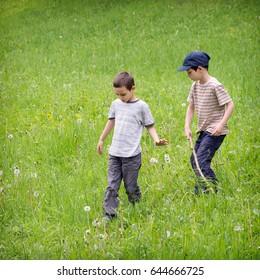 Children walking on a wild meadow field in green grass