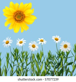 Children's collage of a camomile and sunflower. Isolated on cyan.