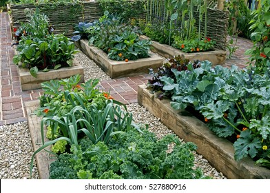 Childrens' edible vegetable garden