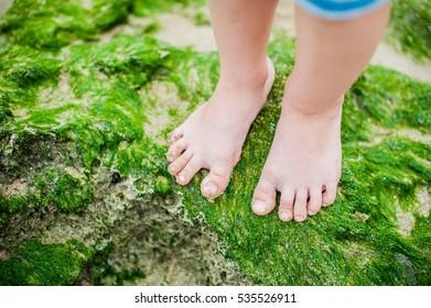 Children's feet on the seaweed on the beach