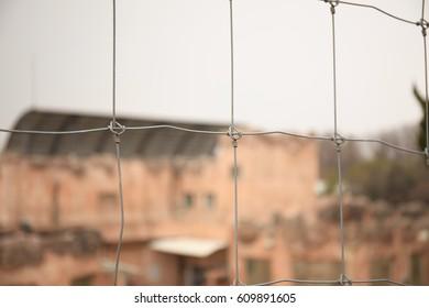 Children's Grand Zoo Barbed Wire.