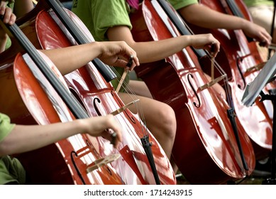 Children's hands bowing across cello fingerboards during an orchestral recital