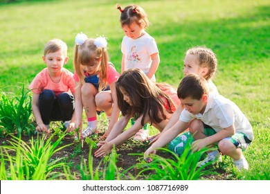 Children's hands planting young tree on black soil together as the world's concept of rescue