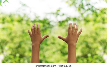 children's hands raised hands in the air